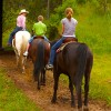 horseback riding Grafton